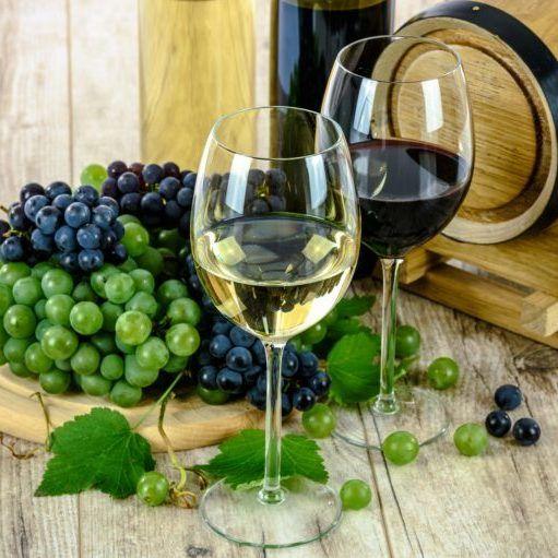 Conservare il vino e creare la cantina vini ideale – Vini da inserire